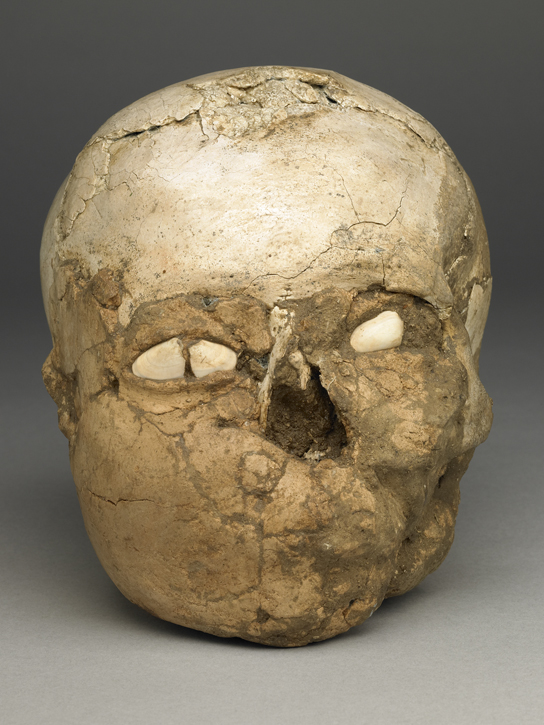 The Jericho skull shown with face forwards. The eyes are made from shell.