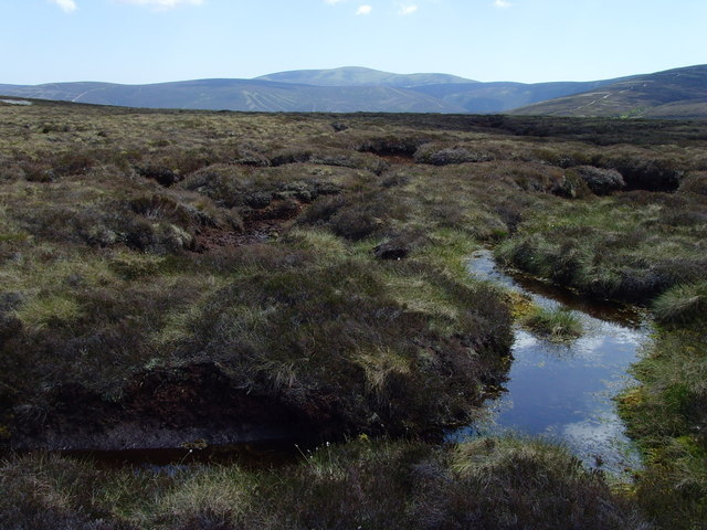 Blanket_Bog_in_the_Forest_of_Birse_-_geograph.org.uk_-_1495246